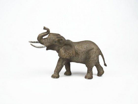 Символ Слон