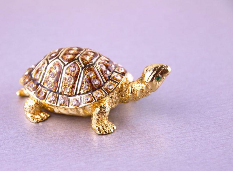 Каким значением обладает черепаха по фен шуй