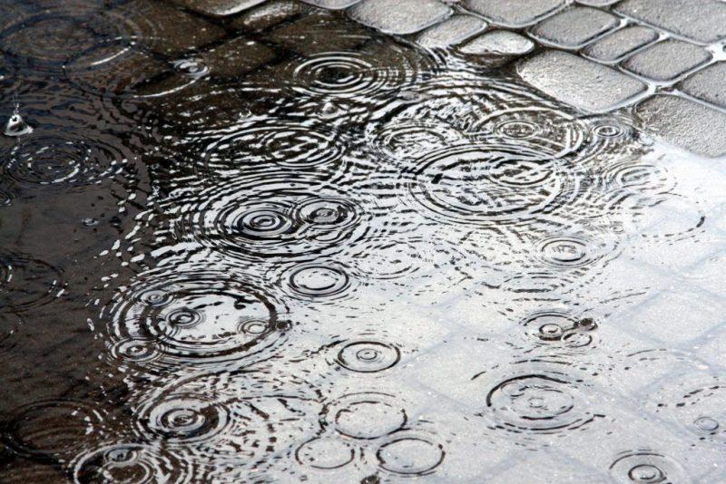 Народные приметы к дождю дождливые приметы