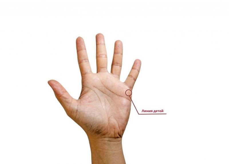 линии детей на руке фото