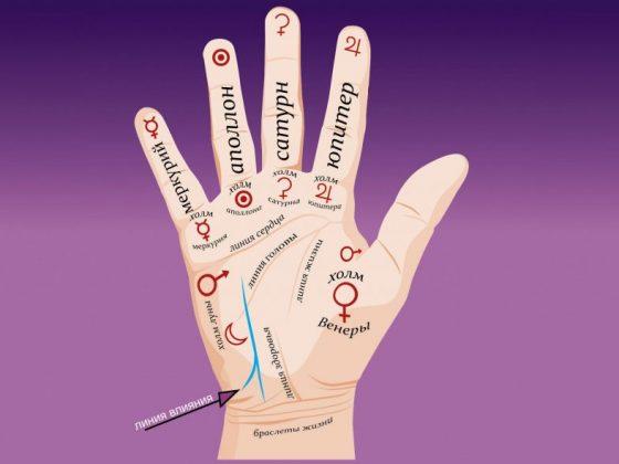 Значение линии влияния на руке в хиромантии