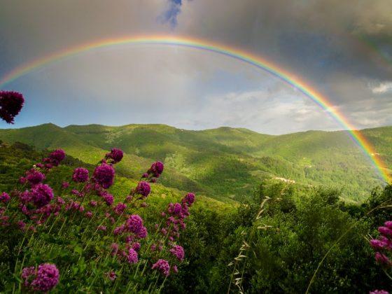 Увидеть в небе радугу