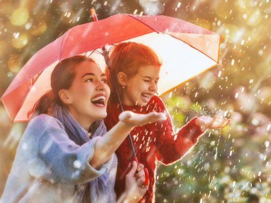 Дятел стучит к дождю