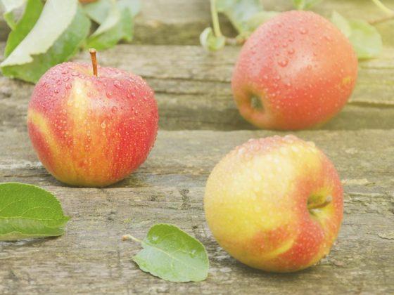 Обязательно приготовьте яблочный пирог