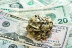Значение денежной жабы по фен-шуй