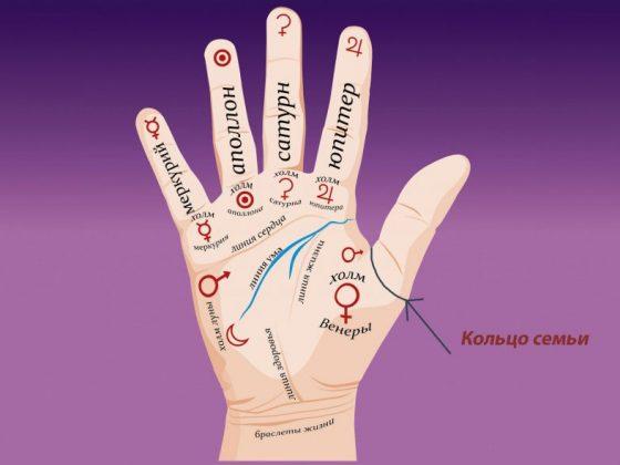 Значение Кольца Семьи в хиромантии