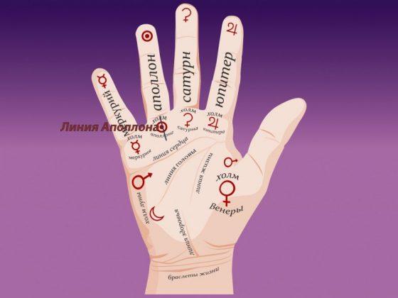 Значение линии Аполлона на руке