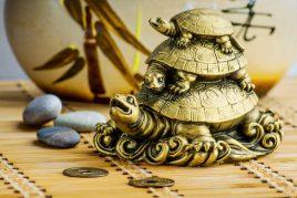 Значение черепахи в Фен-Шуй