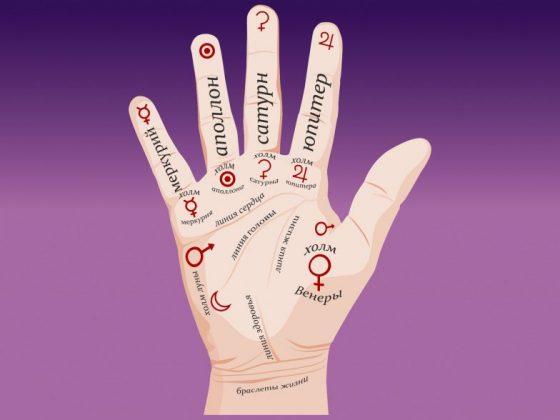 Названия пальцев на руке человека, и чтение информации по пальцам