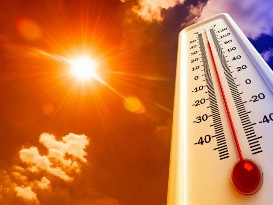Июль порадует уральцев теплыми днями