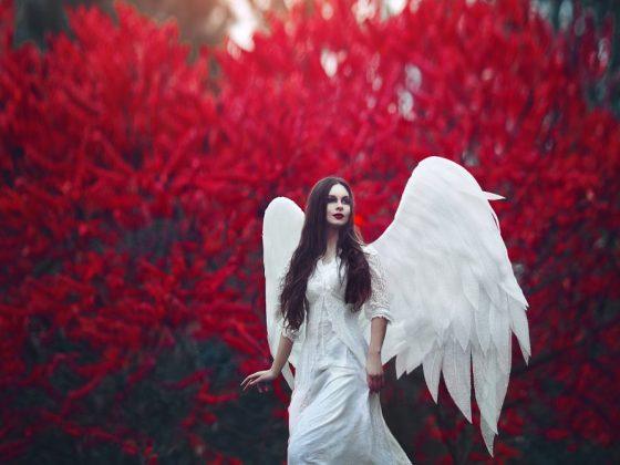 Крылья символизируют скорую любовь